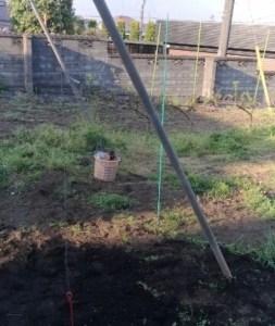 V字ジョイント用の果樹棚の作り方 40