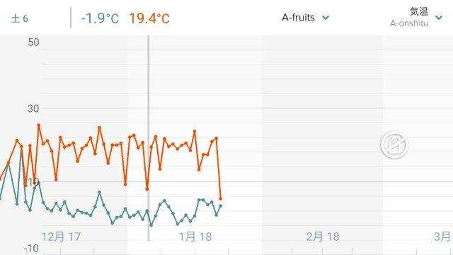 【農業センサーで無加温ハウスの室温を計測】-2℃にタッチしたけどフィンガーライムは無事! 25
