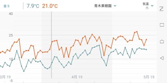 フィンガーライムの灌水方法を解説【ポット栽培における季節ごとの灌水回数と時間】 87