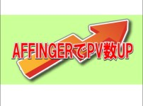 【AFFINGER5でPV数UP】変更後5ヶ月目で月間8万PV達成!【成果の出た記事の書き方のポイント】 6