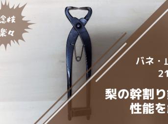 梨の稔枝鋏・幹割り鋏(バネ・止革付)210mm
