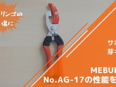 サボテン 芽キズ鋏MEBUKI改 No.AG-17の性能を解説【リンゴ・柑橘の芽キズに】 2