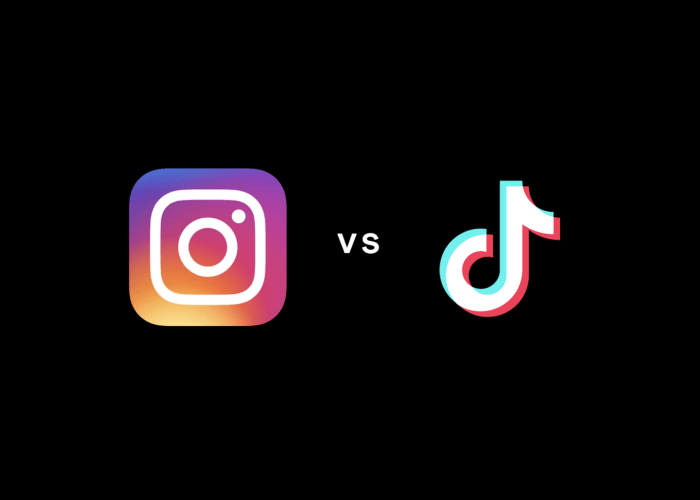 Instagram Reels Vs TikTok: What's the Difference?