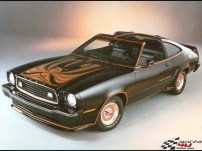 Ford_Mustang_1978x800x600