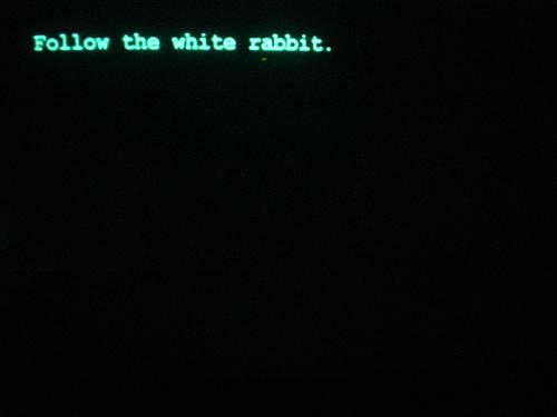 """""""Иди за белым кроликом..."""" - кстати, что-то у того чувака было кроличье в лице"""