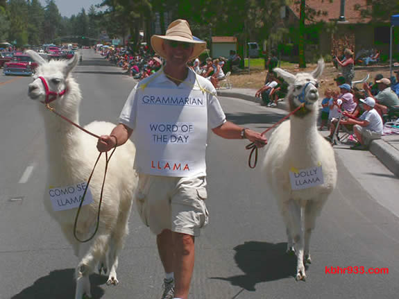 "Larbi Loucif with ""Como Se Llama"" and ""Dolly Llama"" in last year's Old Miners' Days Parade, in which the Toastmasters also had a float."