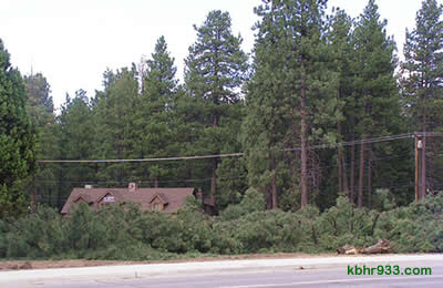 The Moonridge Y (here, in August 2007, during tree removal) had been home to 55 trees. The Y had once been home to Fastlane Ski and Board Shop and, in the '80s, French's Nursery.