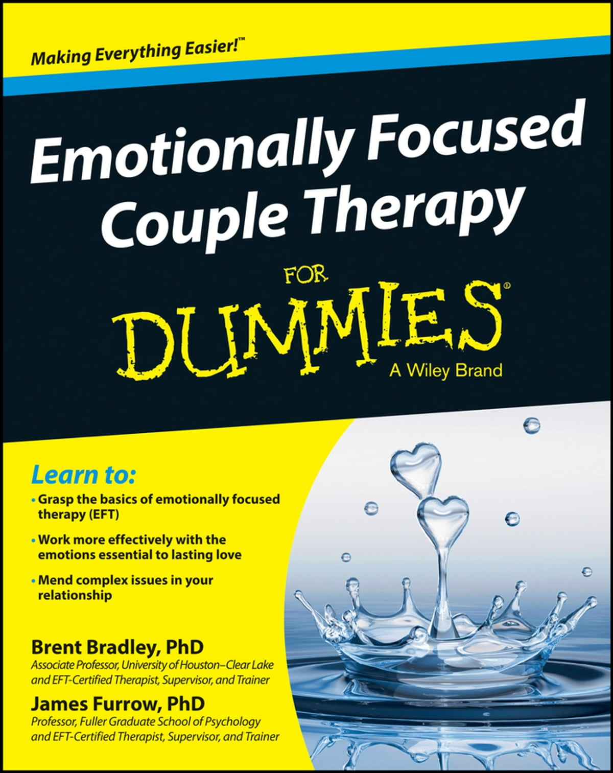 Emotionally Focused Couple Therapy For Dummies Ebook Door
