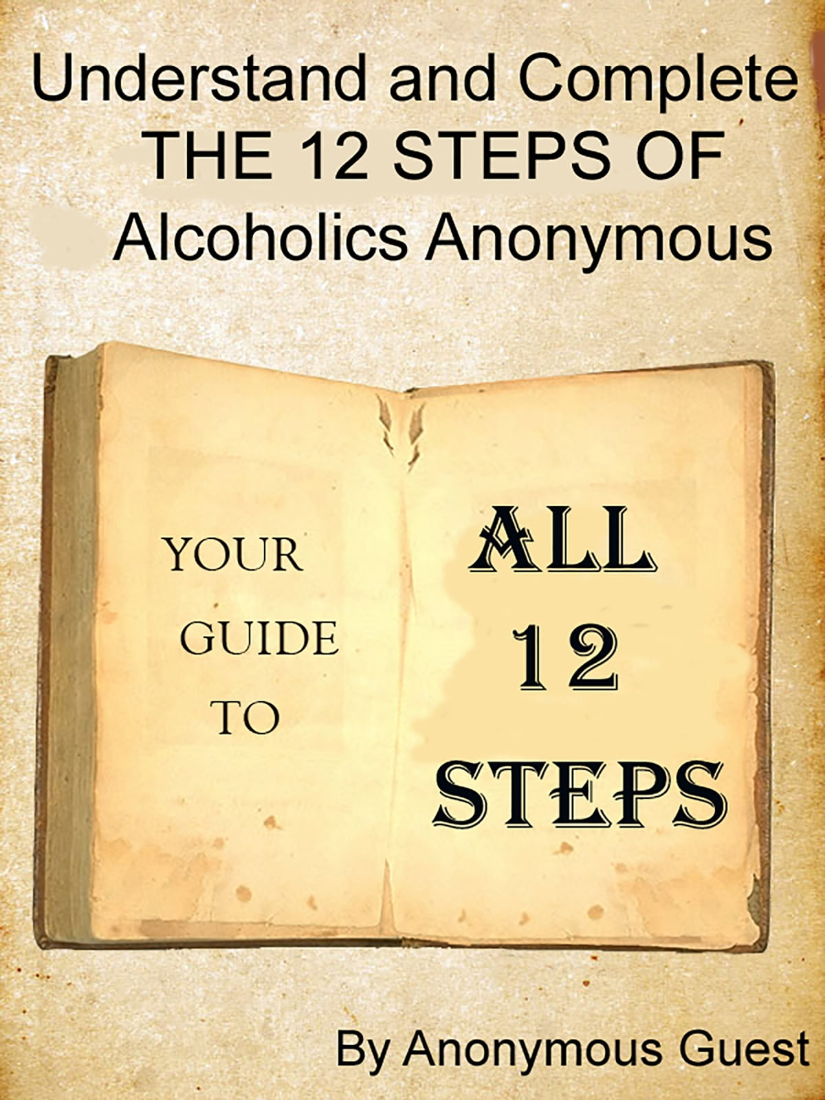 Big Book Of Aa All 12 Steps