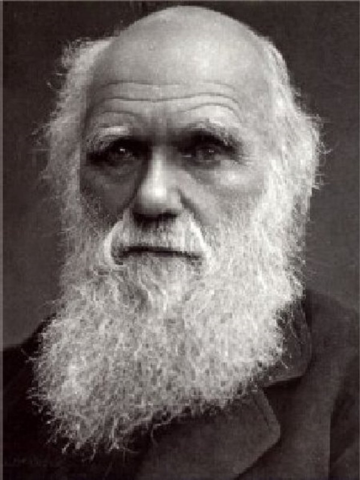The Life And Letters Of Charles Darwin Followed By More