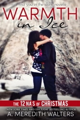 Warmth in Ice (A Find You in the Dark novella)