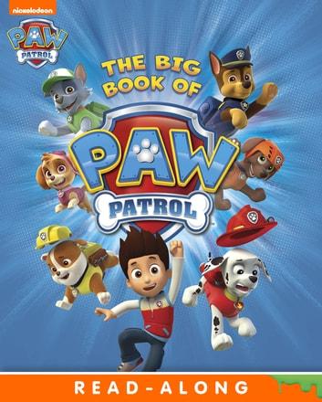 paw patrol # 11