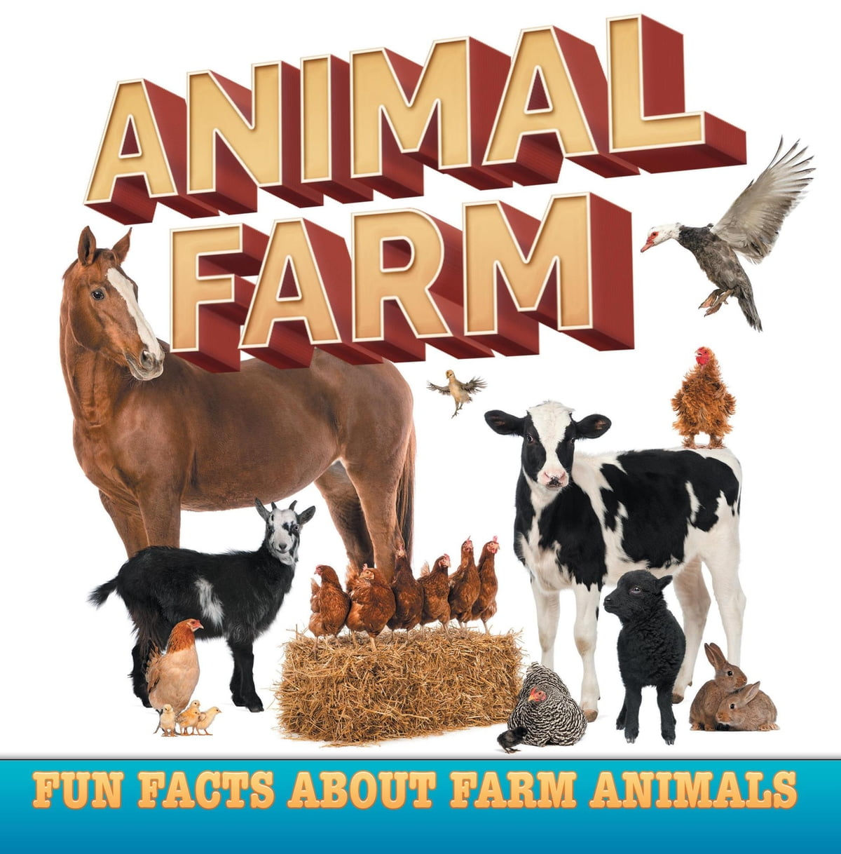 Animal Farm Fun Facts About Farm Animals Ebook By Baby