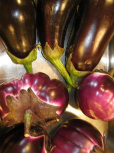 Eggplant will become dinner.