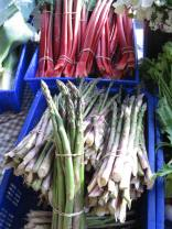 Rhubard and asparagus at Anchor Nursery