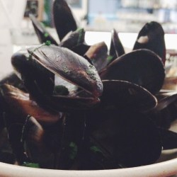 The Fox Hotel - Bottomless Mussels