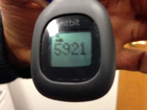 FitBit in Action