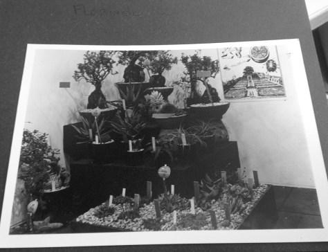 Entry of VU Hortus for the Floriade 1972