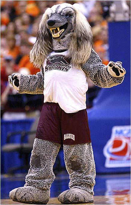 Mascot Monday: Southern Illinois Salukis   KC College Gameday