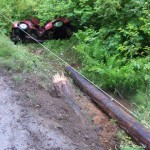 A Florence woman died early Thursday Morning, June 13th, when her car struck a utility pole on Highway 126 west of Noti.