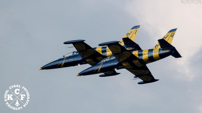 Baltic Bees jet team