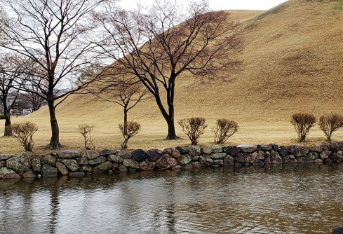 Busan day 4 - Daereungwon Tumuli Park 7