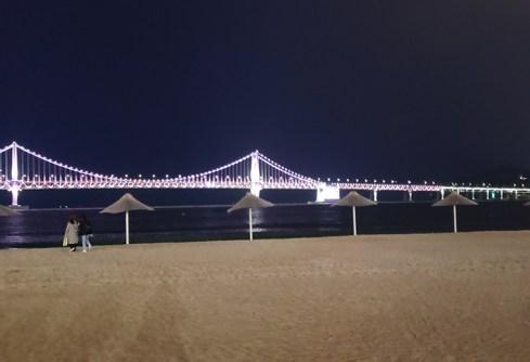 Day 5 - bridge