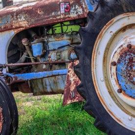 Hillcountry Lavendar in Blanco, Texas