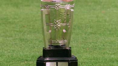 The Liam MacCarthy Cup. File photo.