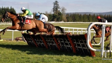 Kilkenny GAA's 4th annual race day at Gowran Park takes place Saturday 19 March 2016. Photo: kilkennygaa.ie