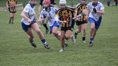 28 Feb 2016; IDS National League Division 1, Kilkenny v Waterford, Piltown GAA Complex, Kilkenny. Picture credit: Gabhán Ó Caoillte/Kilkenny Camogie (Facebook)