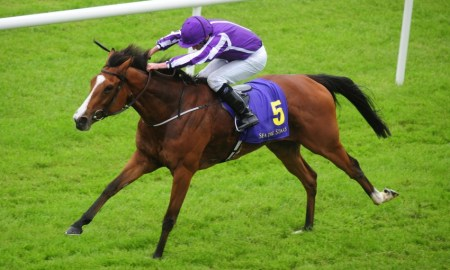 The Aidan O'Brien trained Minding. Photo: Horse Racing Ireland/HRI.ie
