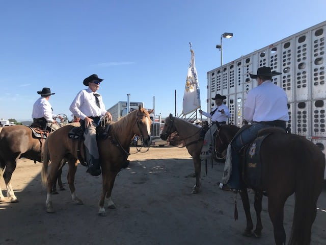 2019 Stampede Days Rodeo