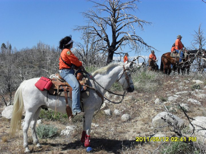 Tehachapi Search