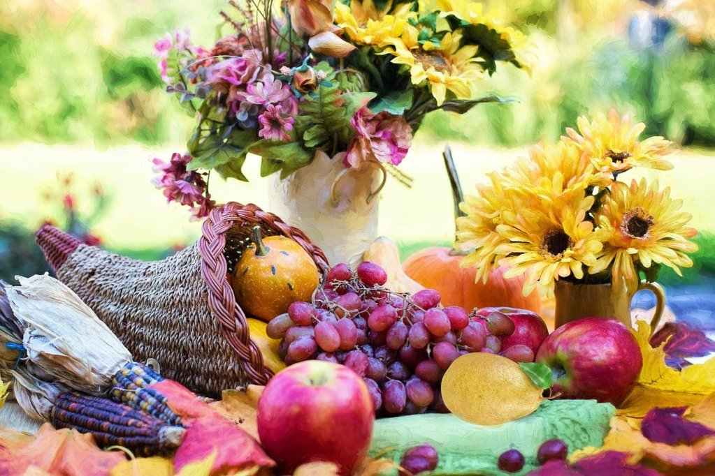 cornucopia, thanksgiving, autumn