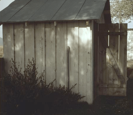 An old shed in the backyard