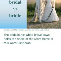 Word Confusion: Bridal versus Bridle