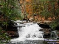 Mill Creek Fall Autumn