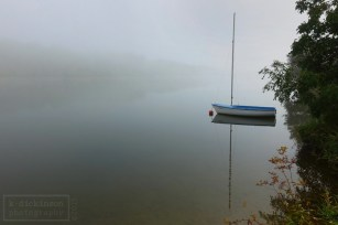 2015-10-14 Danube Fog