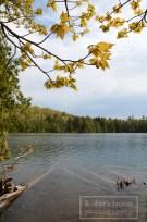 Beaver Basin Wilderness