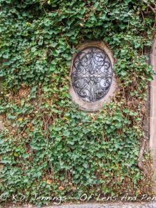 Saarbruecken wrought-iron window ivy wall