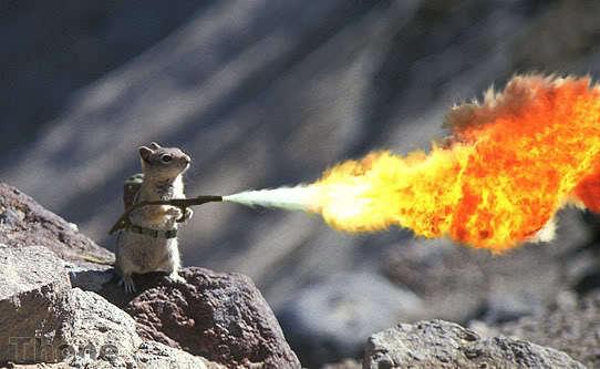 Handheld Flameball Thrower