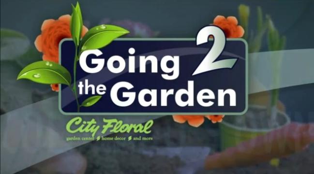 Going 2 the Garden