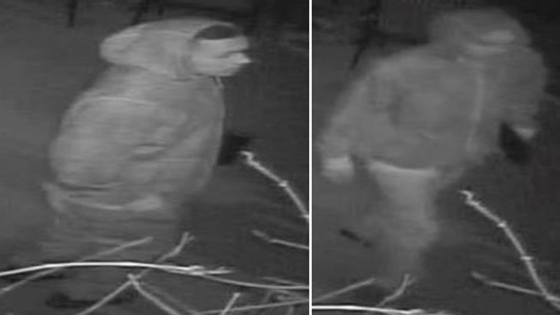 The suspect pictured above burglarized a home near W. Exposition and S. Wolff St. on April 5, 2014, police say. (Photo: DPD)