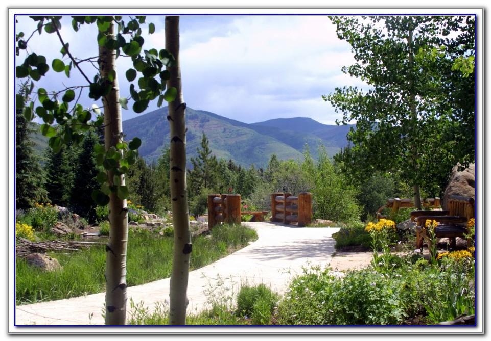 Betty Ford Alpine Gardens Yoga