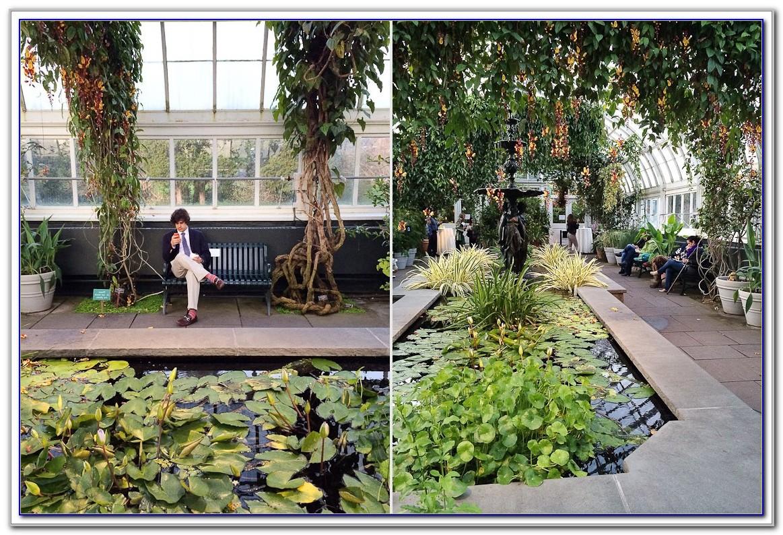 Botanical Garden Bronx New York 10458