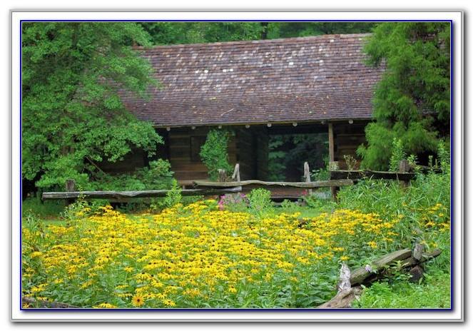 Botanical Gardens Asheville Weddings