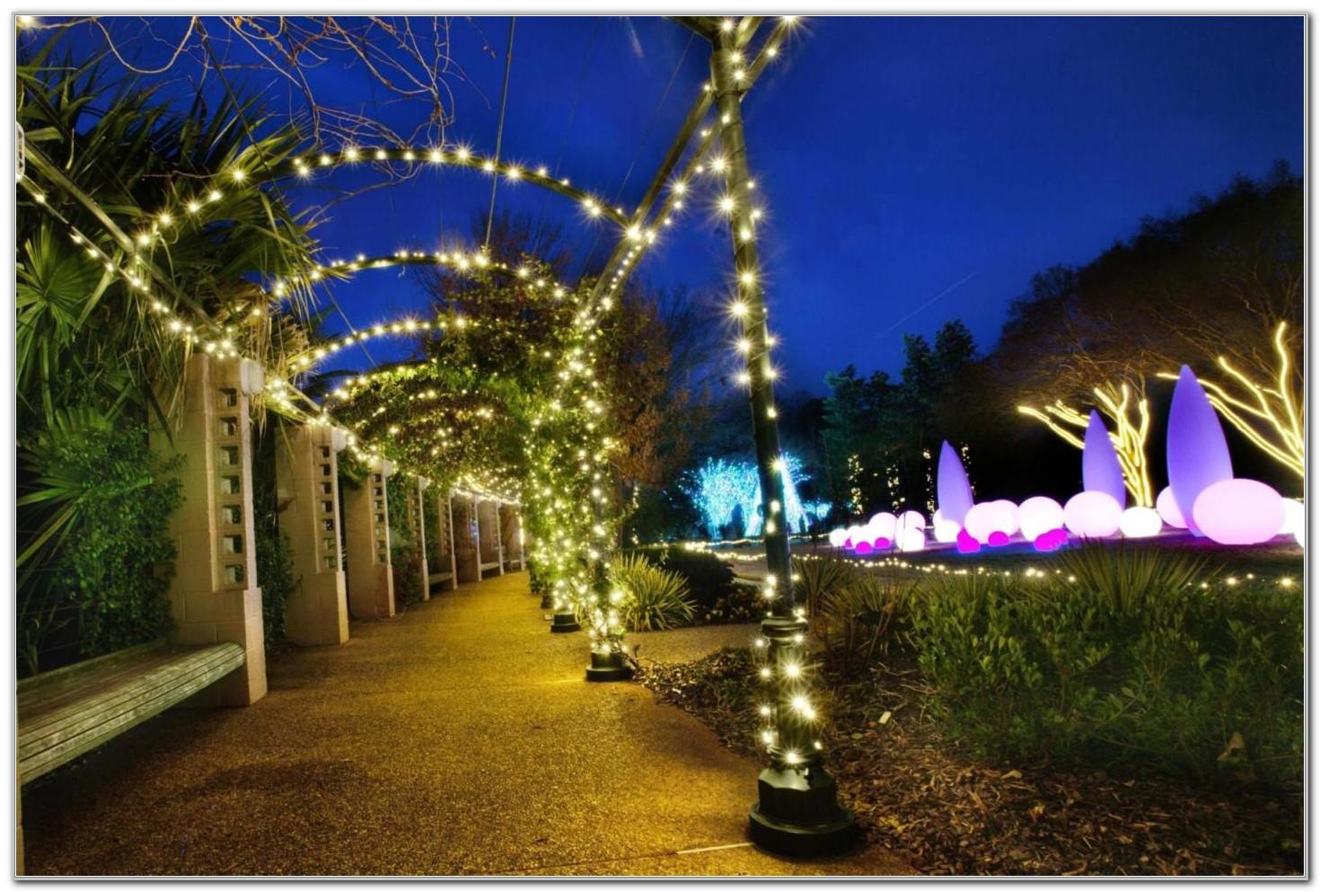 Botanical Gardens Atlanta Ga Lights