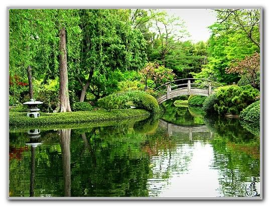 Botanical Gardens Fort Worth Texas