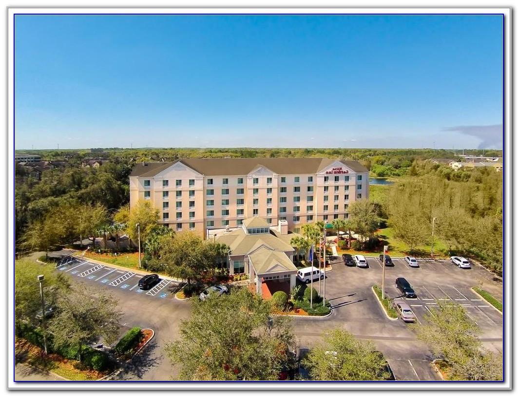 Busch Gardens Tampa Hotels Nearby
